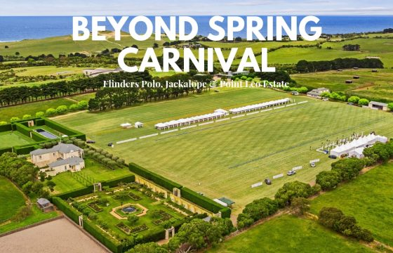 BEYOND SPRING CARNIVAL // World class experiences & more bang for your buck